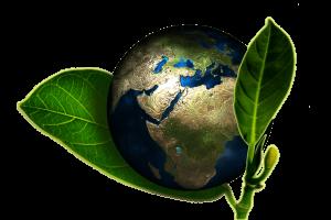 Die Erde, eingebettet in grünen Blättern - Umweltsymbolik