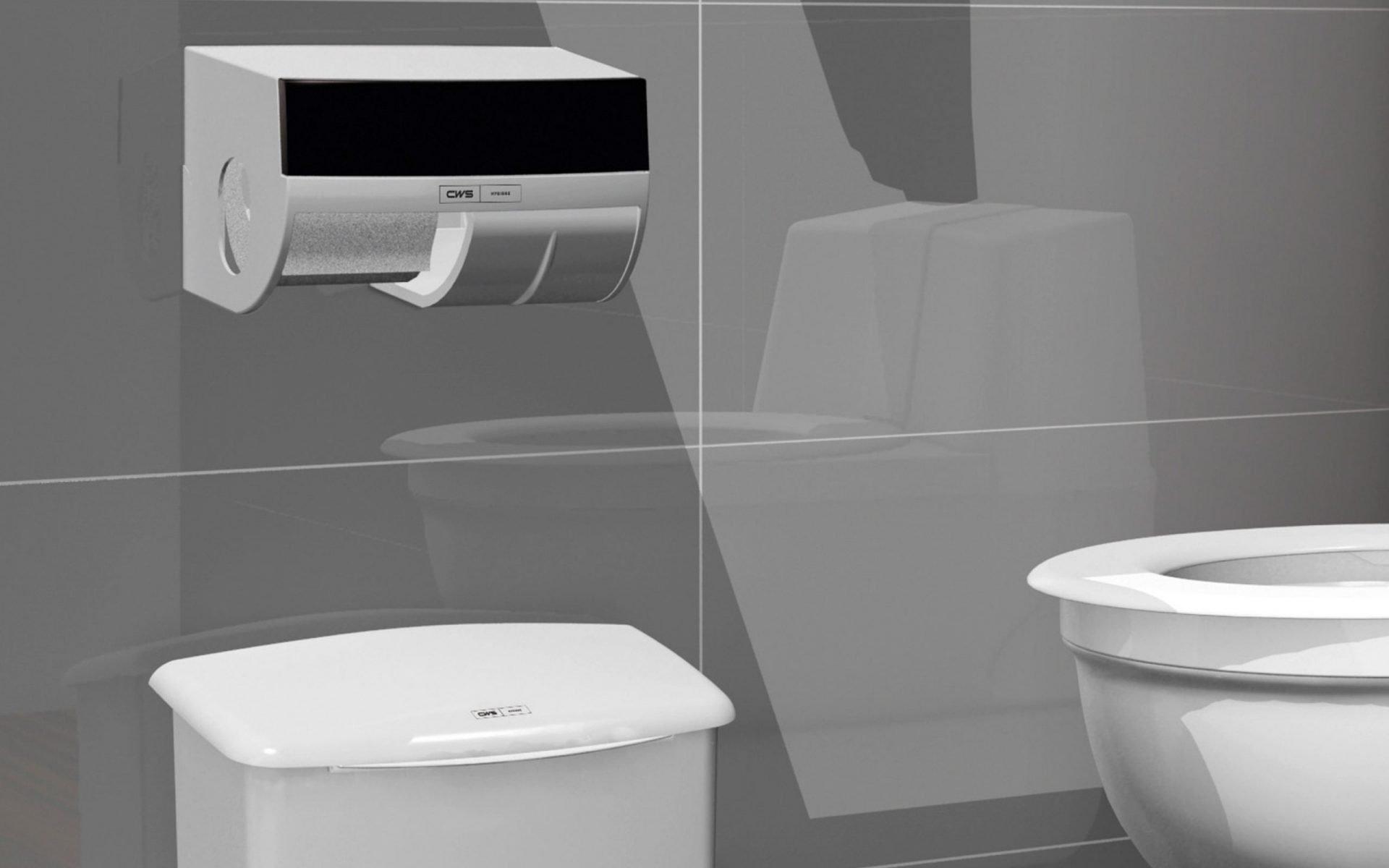 Toilettenraum - Ausschnitt mit Toilettenpapierspender - Spender für Toilettenpapier